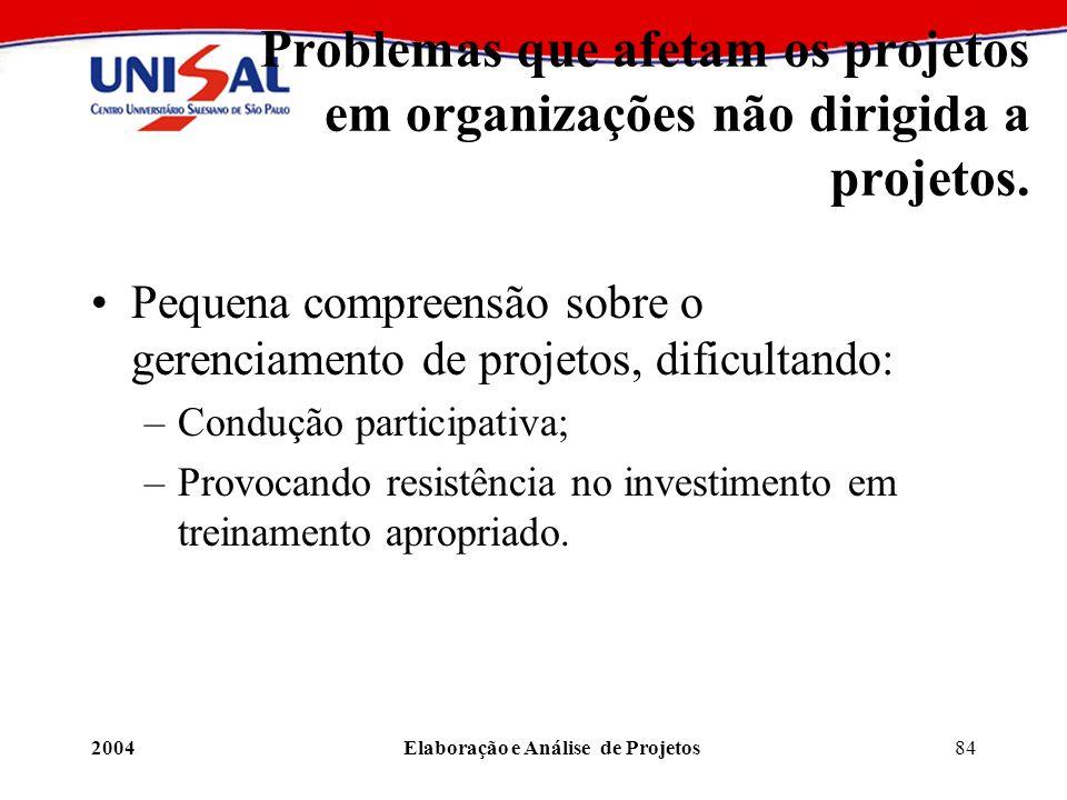 2004Elaboração e Análise de Projetos84 Problemas que afetam os projetos em organizações não dirigida a projetos. Pequena compreensão sobre o gerenciam