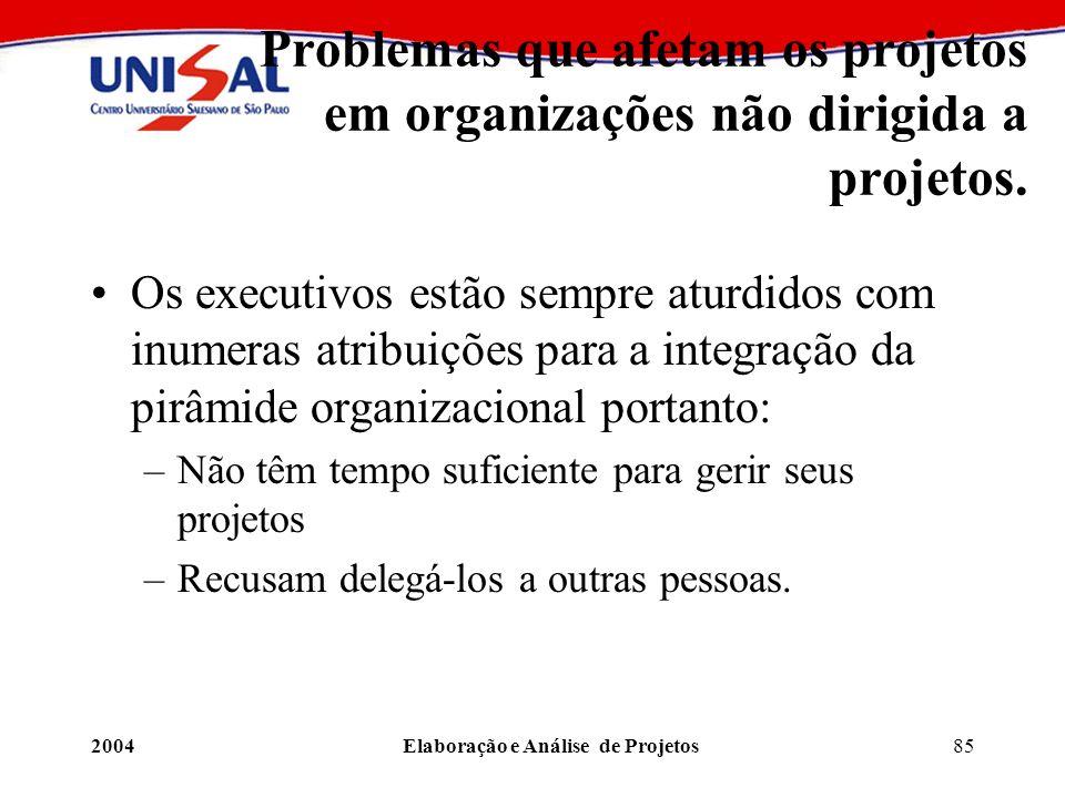 2004Elaboração e Análise de Projetos85 Problemas que afetam os projetos em organizações não dirigida a projetos. Os executivos estão sempre aturdidos