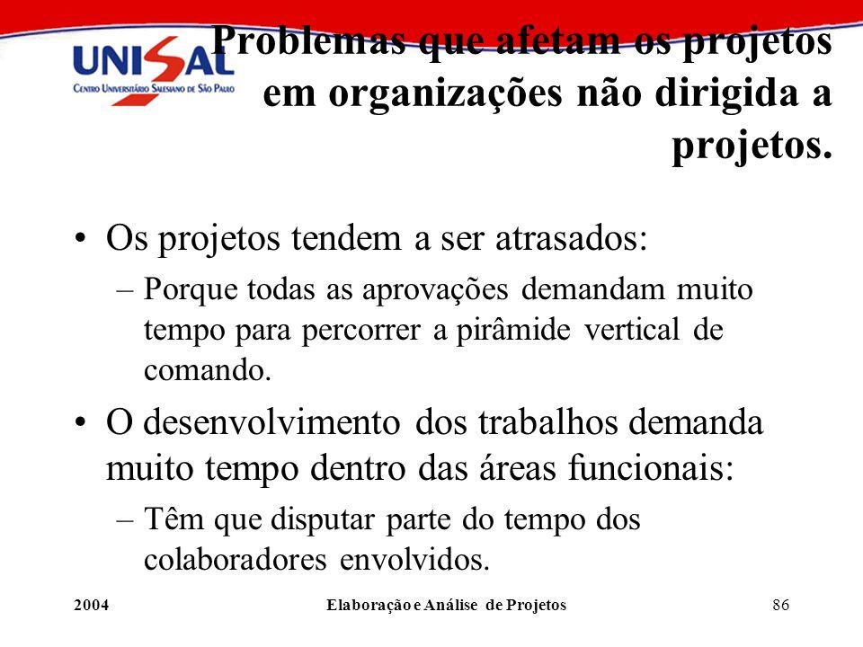 2004Elaboração e Análise de Projetos86 Problemas que afetam os projetos em organizações não dirigida a projetos. Os projetos tendem a ser atrasados: –
