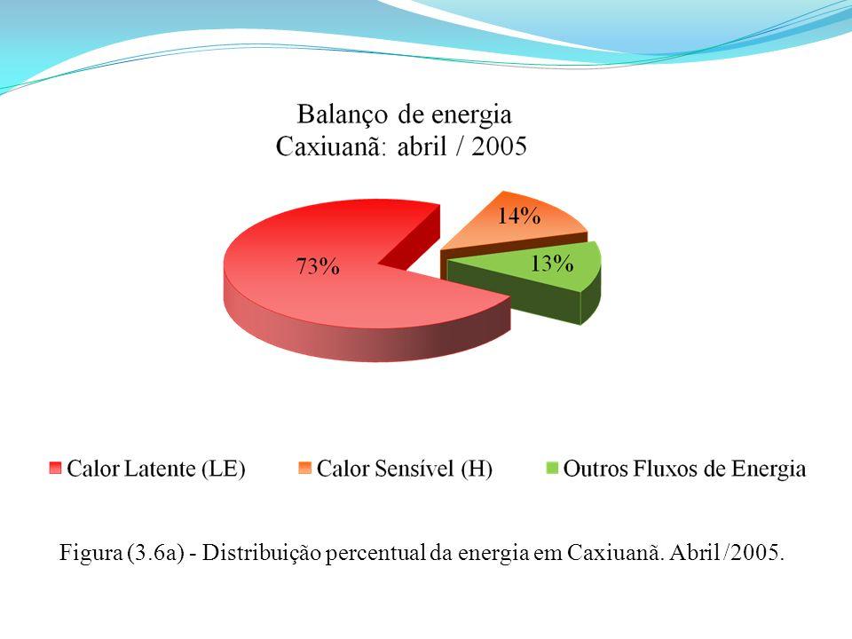 Figura (3.6a) - Distribuição percentual da energia em Caxiuanã. Abril /2005.