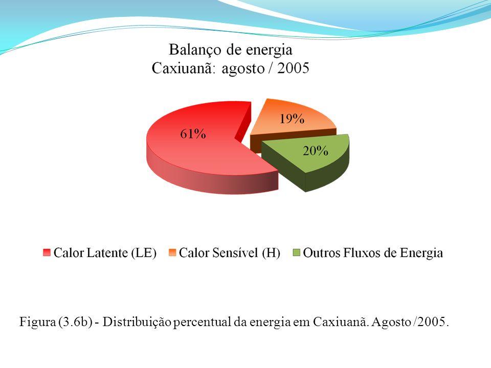 Figura (3.6b) - Distribuição percentual da energia em Caxiuanã. Agosto /2005.