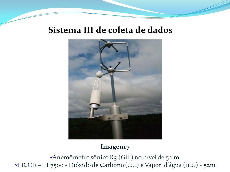 Imagem 7 Anemômetro sônico R3 (Gill) no nível de 52 m. LICOR – LI 7500 - Dióxido de Carbono ( CO 2 ) e Vapor dágua ( H 2 O ) - 52m Sistema III de cole