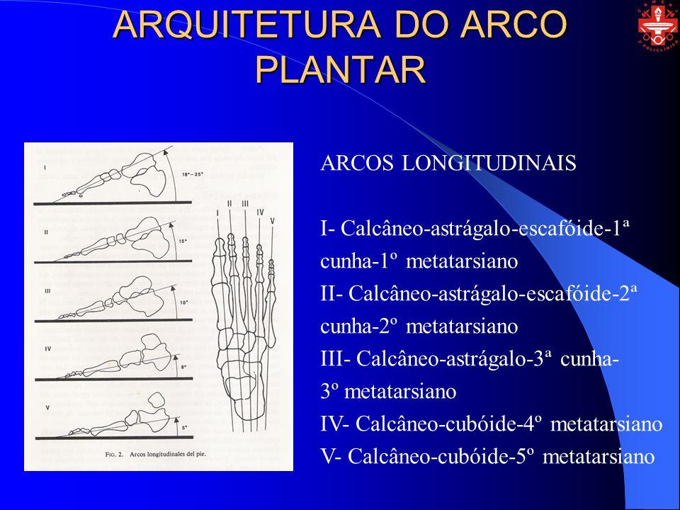 ARQUITETURA DO ARCO PLANTAR ARCOS TRANSVERSAIS A- Astrágalo-calcâneo B- Cuboide-escafoideo C- Cuboide-cunhas D-Metatarsianos