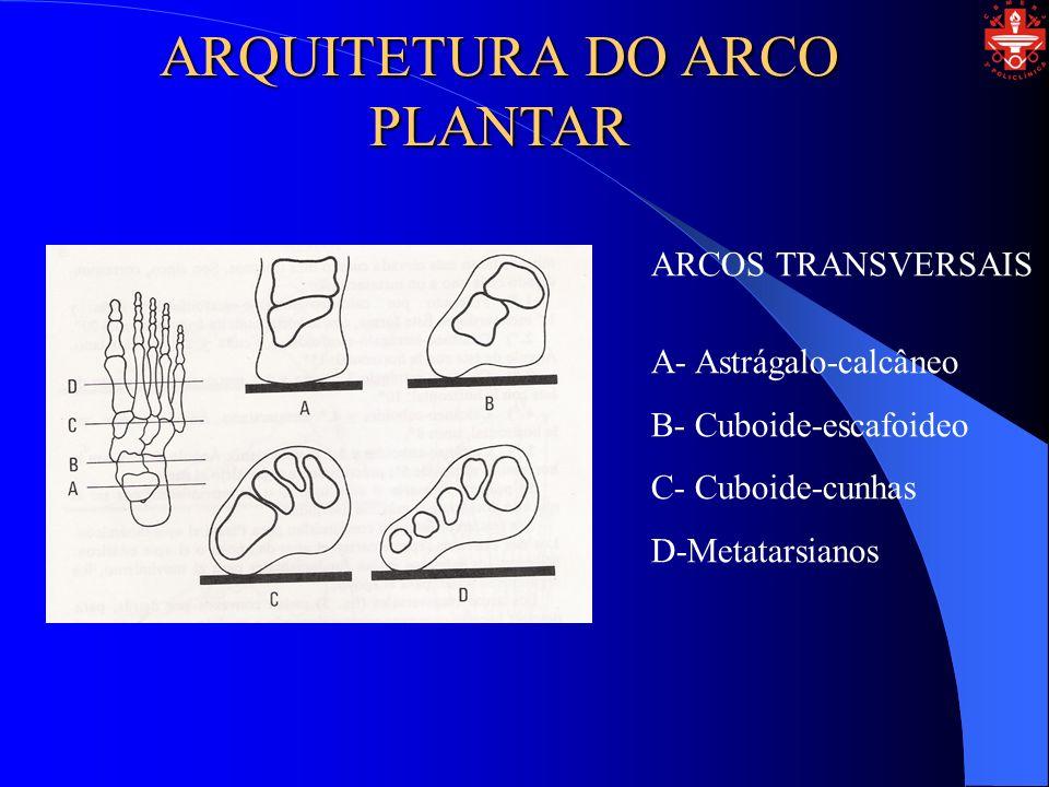 ARQUITETURA DO ARCO PLANTAR OS PRINCIPAIS LIGAMENTOS DA ABÓBADA PLANTAR 1- Ligamentos interósseos subastragalinos 2- Ligamentos calcâneo-escafoideo 3- Ligamentos em Y de Chopart 4- Ligamentos de Lisfranc 5- Ligamentos calcâneo-cuboideo 6- Aponeurose plantar
