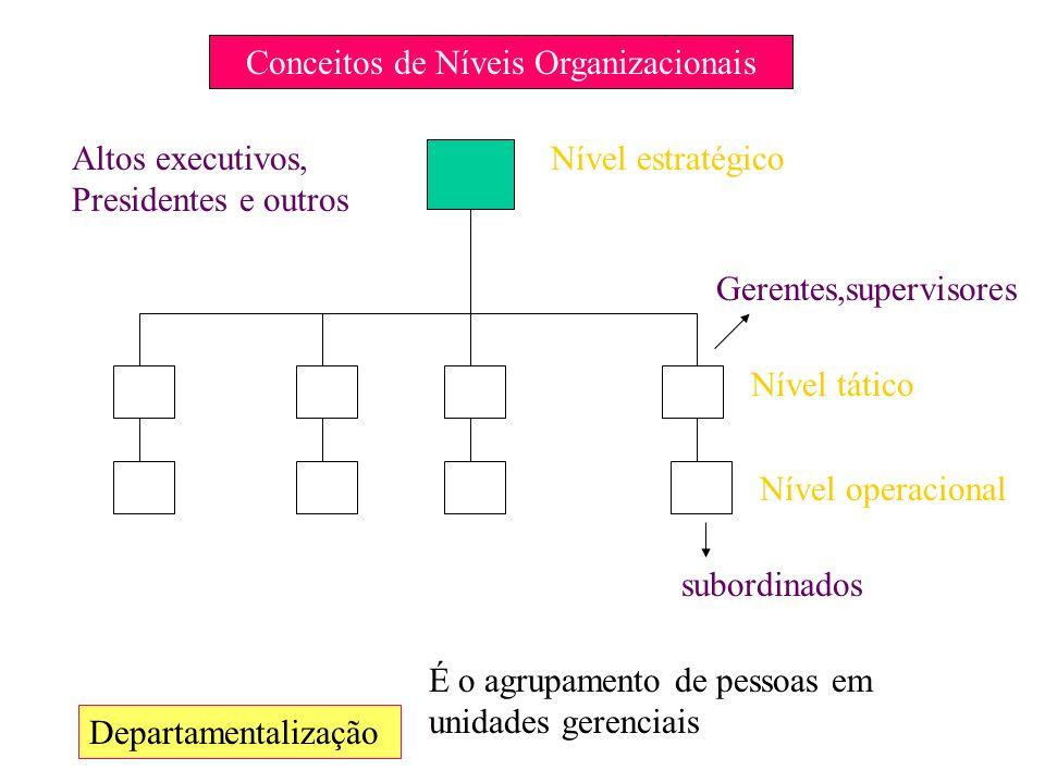 Conceitos de Níveis Organizacionais Departamentalização Nível estratégico Nível tático Nível operacional Altos executivos, Presidentes e outros Gerent