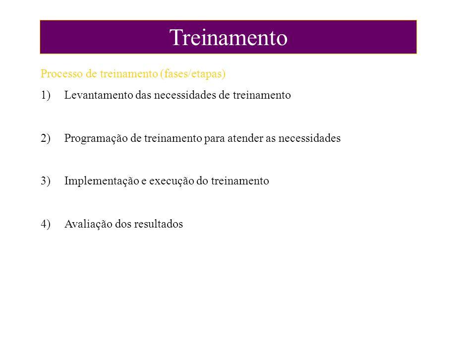 Treinamento Processo de treinamento (fases/etapas) 1)Levantamento das necessidades de treinamento 2)Programação de treinamento para atender as necessi