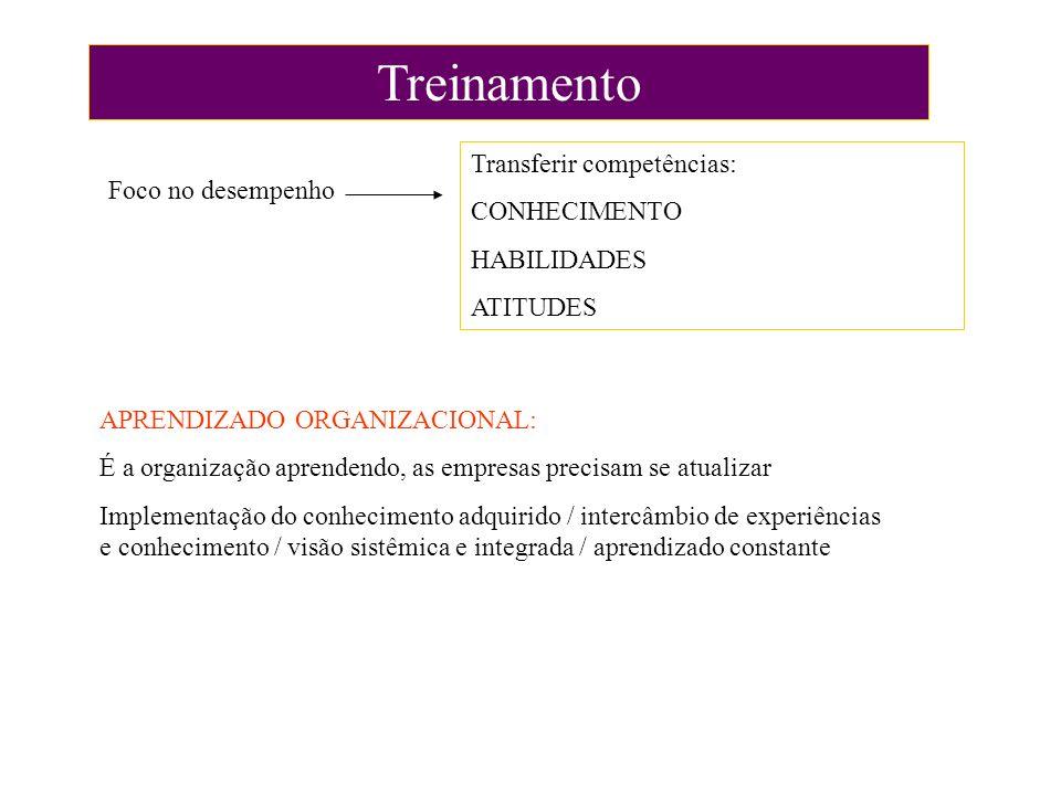 Treinamento Foco no desempenho Transferir competências: CONHECIMENTO HABILIDADES ATITUDES APRENDIZADO ORGANIZACIONAL: É a organização aprendendo, as e