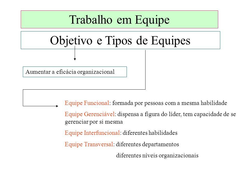 Trabalho em Equipe Objetivo e Tipos de Equipes Aumentar a eficácia organizacional Equipe Funcional: formada por pessoas com a mesma habilidade Equipe