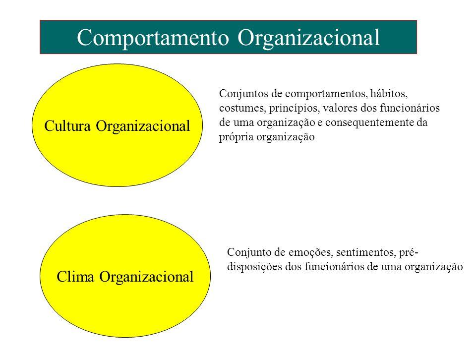 Comportamento Organizacional Cultura Organizacional Clima Organizacional Conjuntos de comportamentos, hábitos, costumes, princípios, valores dos funci