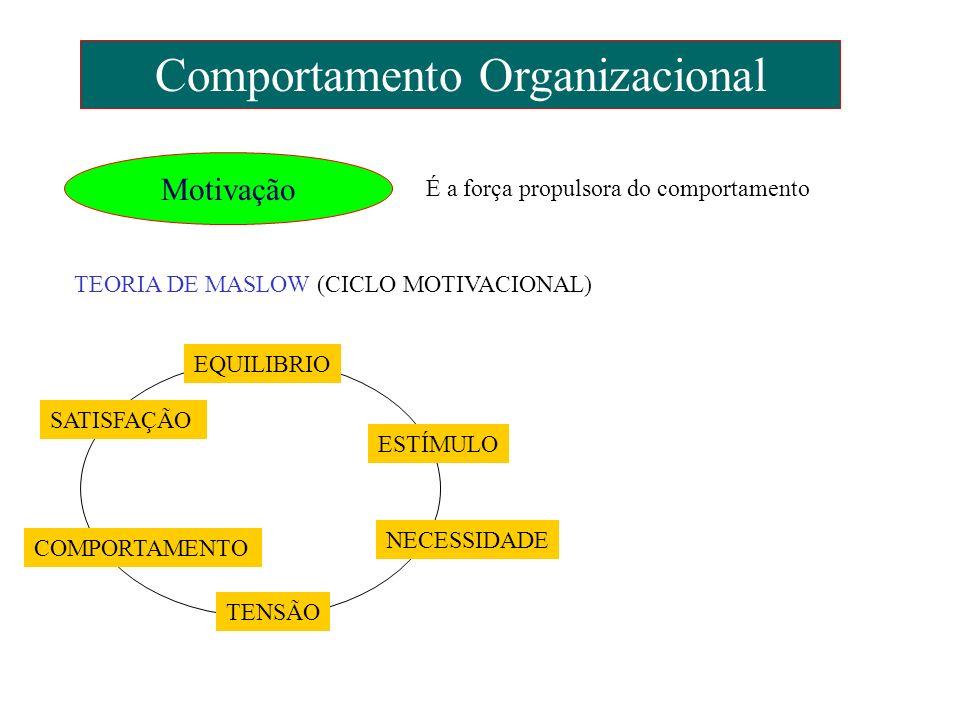 Comportamento Organizacional Motivação É a força propulsora do comportamento TEORIA DE MASLOW (CICLO MOTIVACIONAL) EQUILIBRIO ESTÍMULO NECESSIDADE TEN