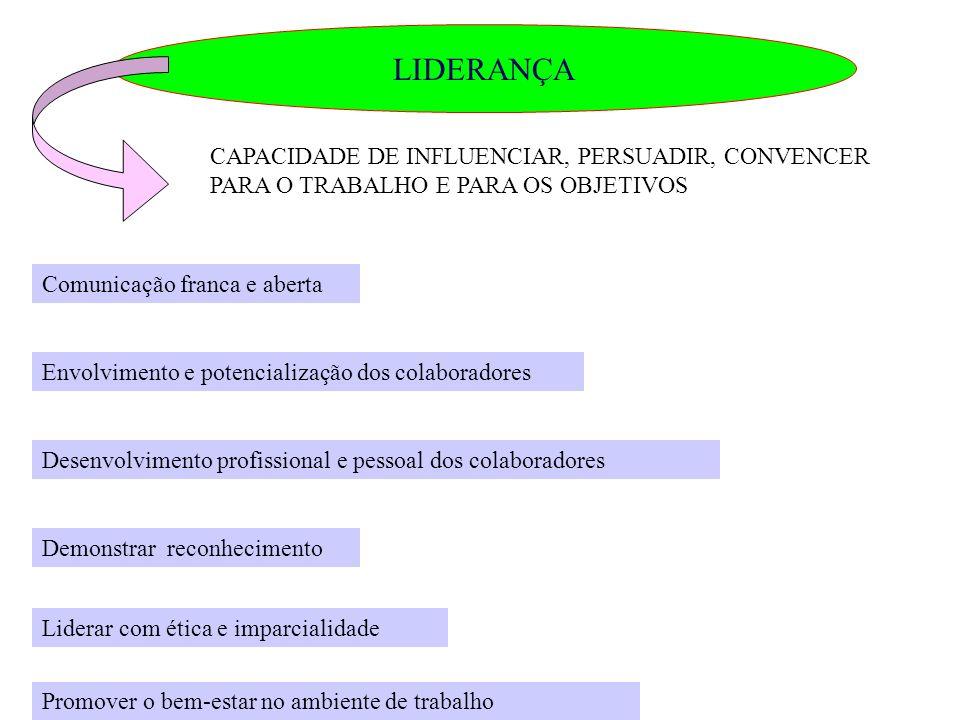 LIDERANÇA CAPACIDADE DE INFLUENCIAR, PERSUADIR, CONVENCER PARA O TRABALHO E PARA OS OBJETIVOS Comunicação franca e aberta Envolvimento e potencializaç