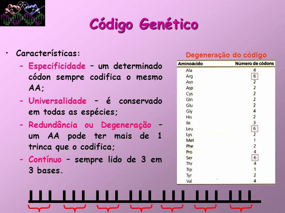 Código Genético Características: –Especificidade – um determinado códon sempre codifica o mesmo AA; –Universalidade – é conservado em todas as espécie