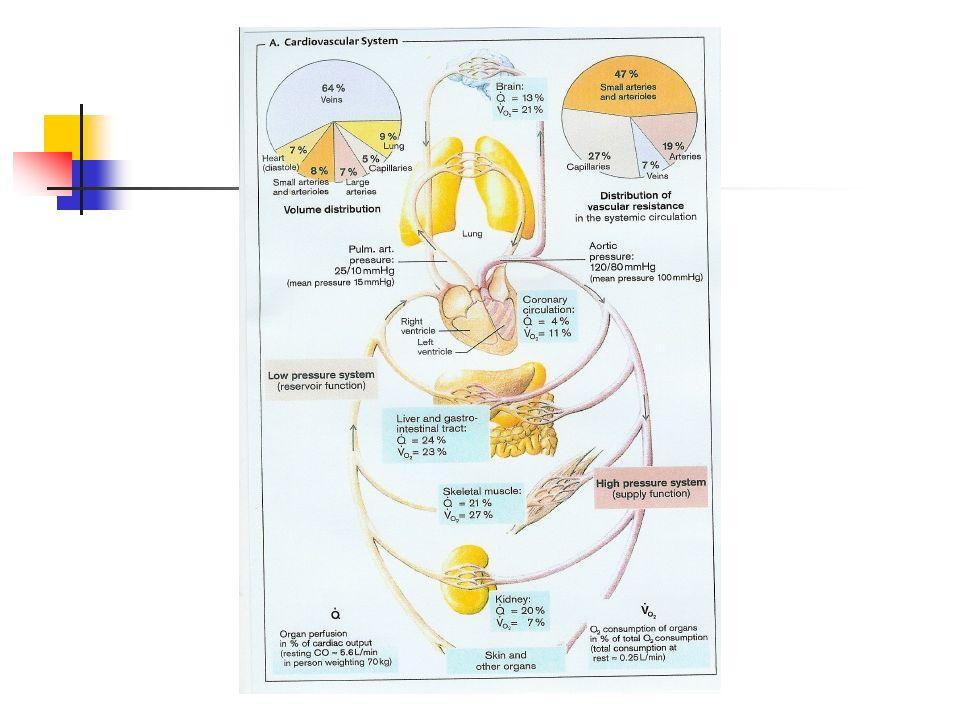 FISIOLOGIA DO SISTEMA CARDIOVASCULAR Ciclo Cardíaco Eventos que ocorrem desde o início de um batimento até início do batimento seguinte.