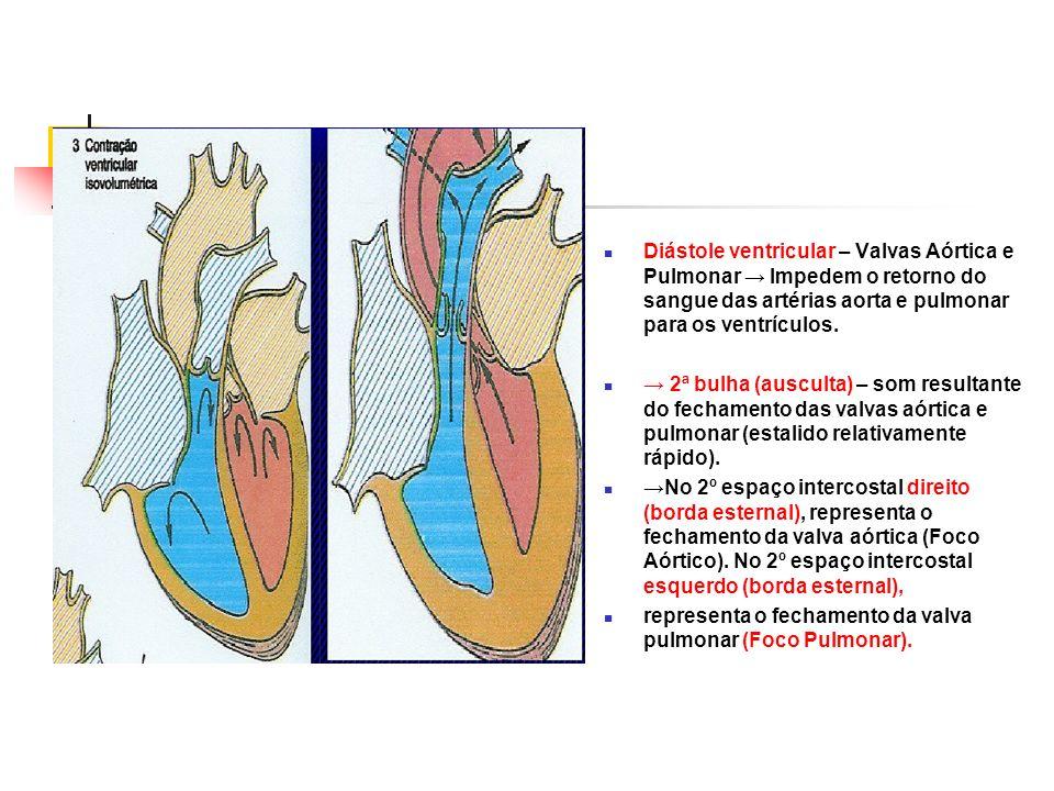 Diástole ventricular – Valvas Aórtica e Pulmonar Impedem o retorno do sangue das artérias aorta e pulmonar para os ventrículos. 2ª bulha (ausculta) –