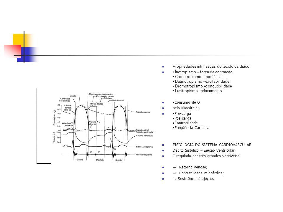 Propriedades intrínsecas do tecido cardíaco: Inotropismo – força de contração Cronotropismo –freqüência Batmotropismo –excitabilidade Dromotropismo –c