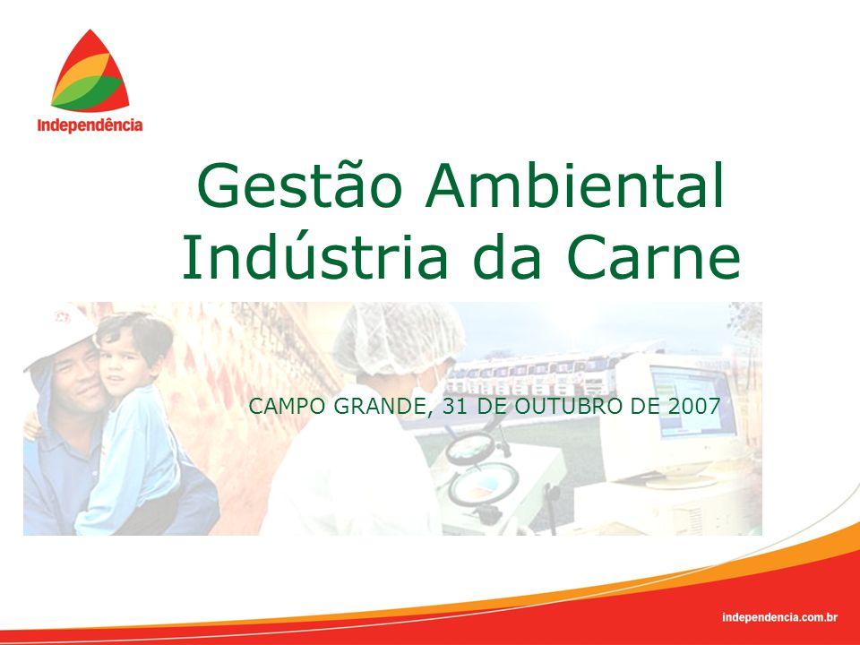 Gestão Ambiental Indústria da Carne CAMPO GRANDE, 31 DE OUTUBRO DE 2007
