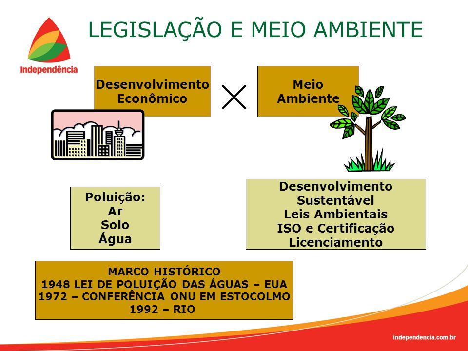 LEGISLAÇÃO E MEIO AMBIENTE Desenvolvimento Econômico Meio Ambiente Poluição: Ar Solo Água Desenvolvimento Sustentável Leis Ambientais ISO e Certificaç