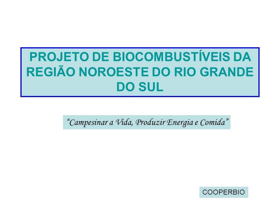 PROJETO DE BIOCOMBUSTÍVEIS DA REGIÃO NOROESTE DO RIO GRANDE DO SUL Campesinar a Vida, Produzir Energia e Comida COOPERBIO