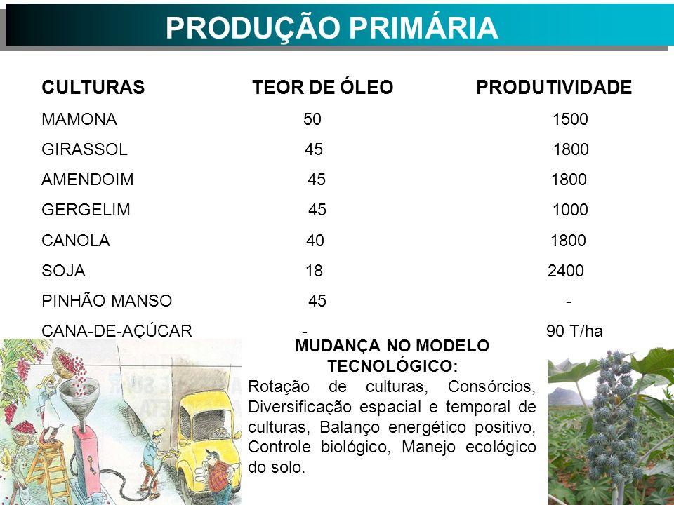 PRODUÇÃO PRIMÁRIA CULTURAS TEOR DE ÓLEO PRODUTIVIDADE MAMONA 50 1500 GIRASSOL 45 1800 AMENDOIM 45 1800 GERGELIM 45 1000 CANOLA 40 1800 SOJA 18 2400 PINHÃO MANSO 45 - CANA-DE-AÇÚCAR - 90 T/ha MUDANÇA NO MODELO TECNOLÓGICO: Rotação de culturas, Consórcios, Diversificação espacial e temporal de culturas, Balanço energético positivo, Controle biológico, Manejo ecológico do solo.