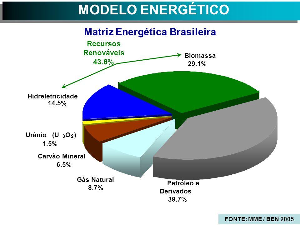 MODELO ENERGÉTICO Matriz Energética Brasileira Biomassa 29.1% Petróleo e Derivados 39.7% Gás Natural 8.7% Carvão Mineral 6.5% Hidreletricidade 14.5% Urânio (U 3 O 2 ) 1.5% Recursos Renováveis 43.6% FONTE: MME / BEN 2005