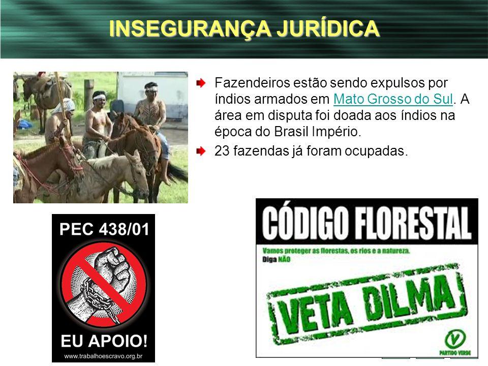 17 INSEGURANÇA JURÍDICA Fazendeiros estão sendo expulsos por índios armados em Mato Grosso do Sul. A área em disputa foi doada aos índios na época do