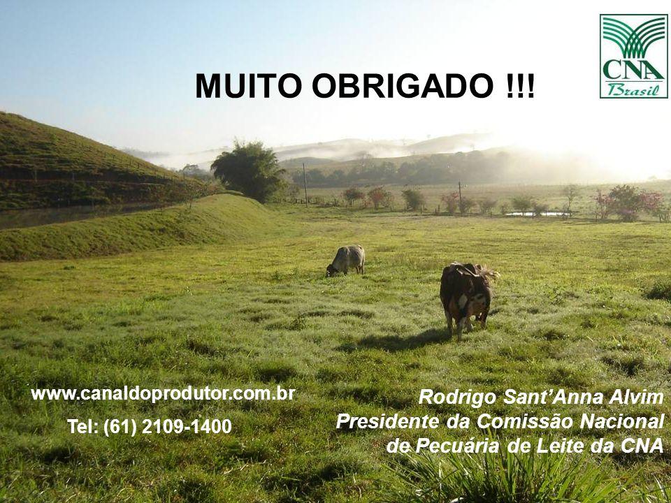 46 Rodrigo SantAnna Alvim Presidente da Comissão Nacional de Pecuária de Leite da CNA MUITO OBRIGADO !!! www.canaldoprodutor.com.br Tel: (61) 2109-140