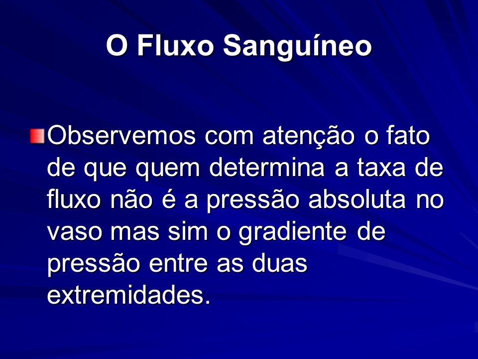 O Fluxo Sanguíneo Fluxo Laminar; Fluxo Turbulento.