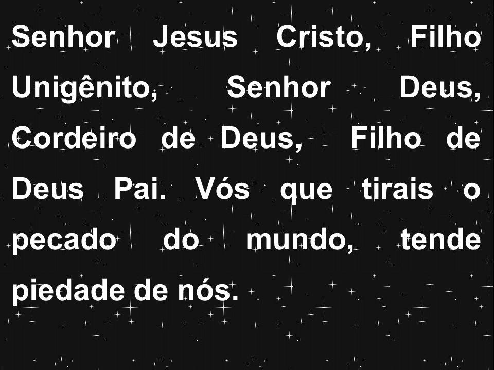 Senhor Jesus Cristo, Filho Unigênito, Senhor Deus, Cordeiro de Deus, Filho de Deus Pai. Vós que tirais o pecado do mundo, tende piedade de nós.