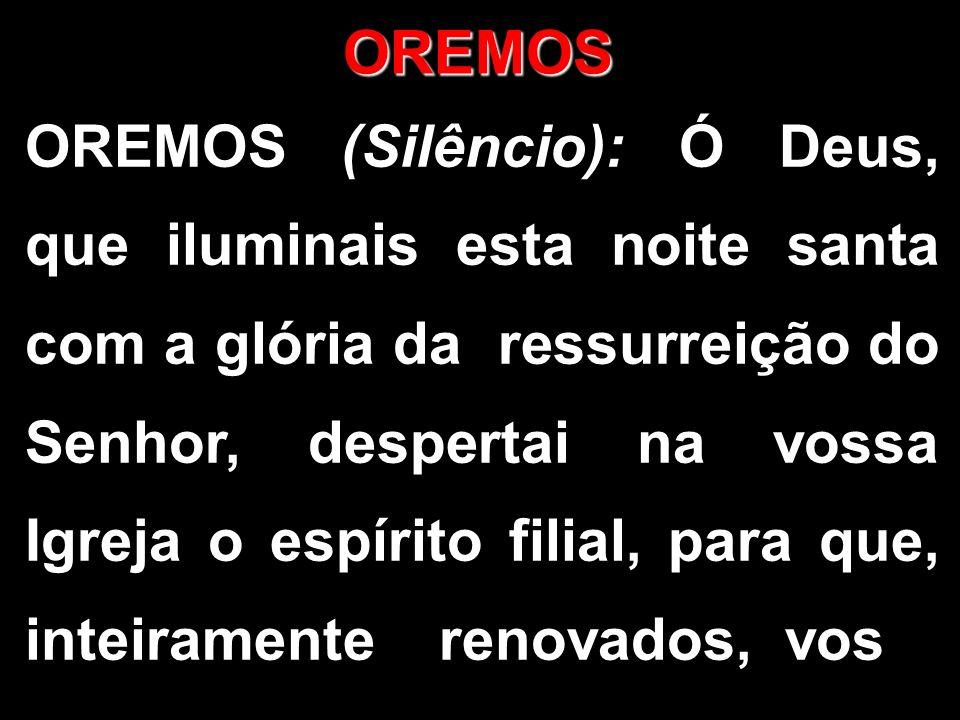 OREMOS OREMOS (Silêncio): Ó Deus, que iluminais esta noite santa com a glória da ressurreição do Senhor, despertai na vossa Igreja o espírito filial,