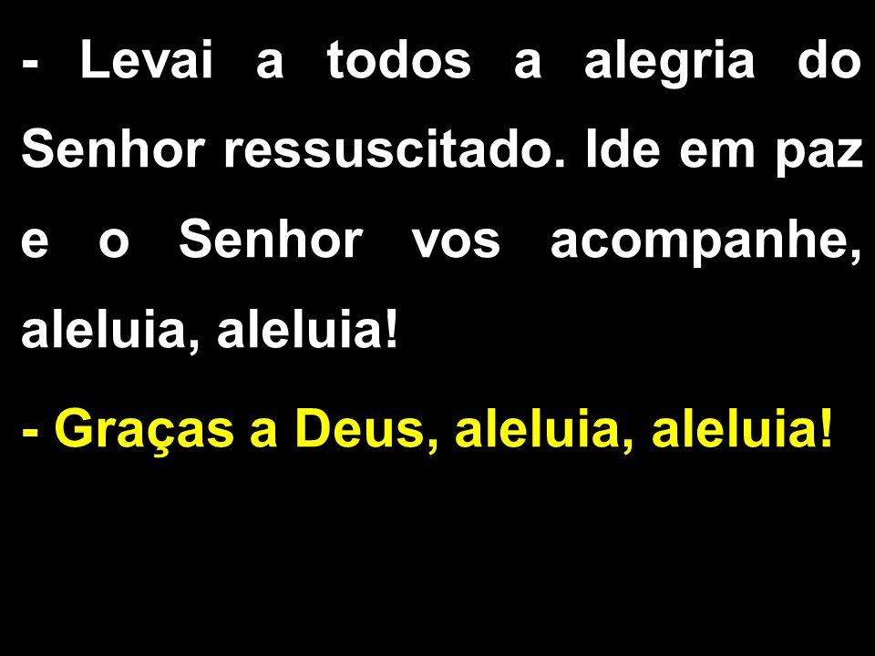 - Levai a todos a alegria do Senhor ressuscitado. Ide em paz e o Senhor vos acompanhe, aleluia, aleluia! - Graças a Deus, aleluia, aleluia!