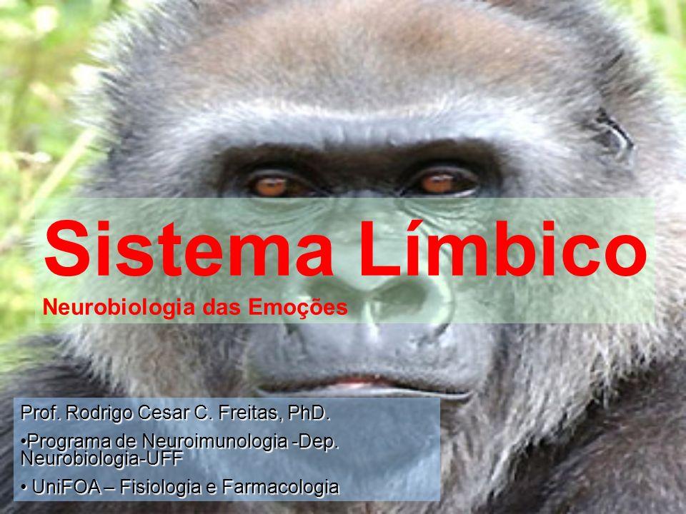 Sistema Límbico Neurobiologia das Emoções Prof. Rodrigo Cesar C. Freitas, PhD. Programa de Neuroimunologia -Dep. Neurobiologia-UFFPrograma de Neuroimu