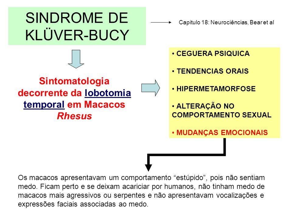 SINDROME DE KLÜVER-BUCY CEGUERA PSIQUICA TENDENCIAS ORAIS HIPERMETAMORFOSE ALTERAÇÃO NO COMPORTAMENTO SEXUAL MUDANÇAS EMOCIONAIS Sintomatologia decorr