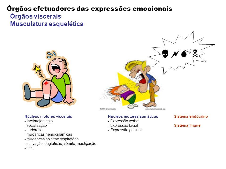 Órgãos efetuadores das expressões emocionais Órgãos viscerais Musculatura esquelética Núcleos motores viscerais - lacrimejamento - vocalização - sudor