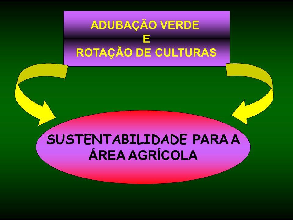 SUSTENTABILIDADE PARA A ÁREA AGRÍCOLA ADUBAÇÃO VERDE E ROTAÇÃO DE CULTURAS