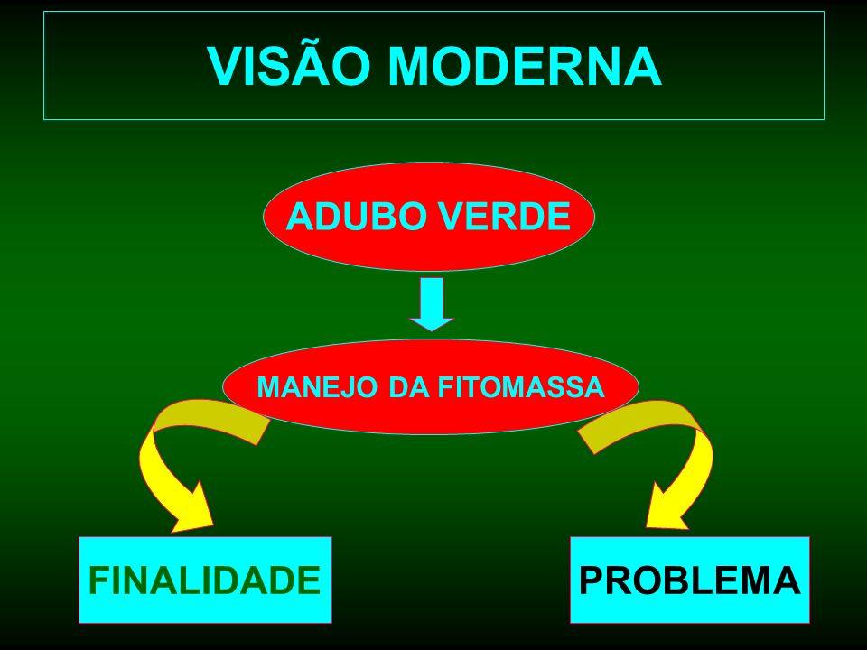 VISÃO MODERNA ADUBO VERDE MANEJO DA FITOMASSA FINALIDADEPROBLEMA