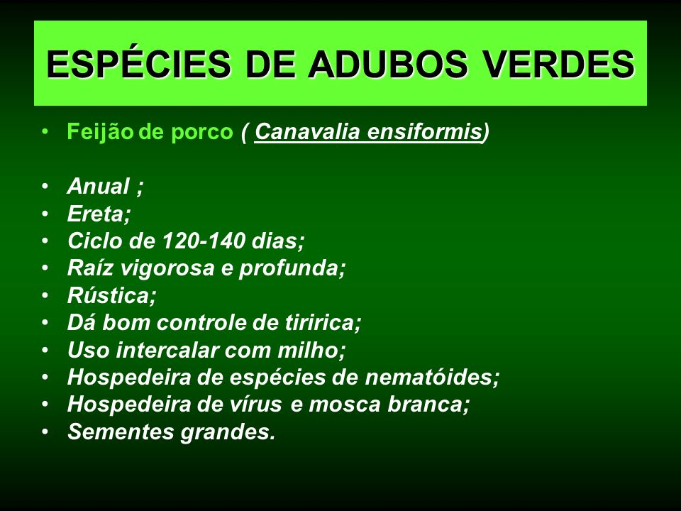 Feijão de porco ( Canavalia ensiformis) Anual ; Ereta; Ciclo de 120-140 dias; Raíz vigorosa e profunda; Rústica; Dá bom controle de tiririca; Uso inte
