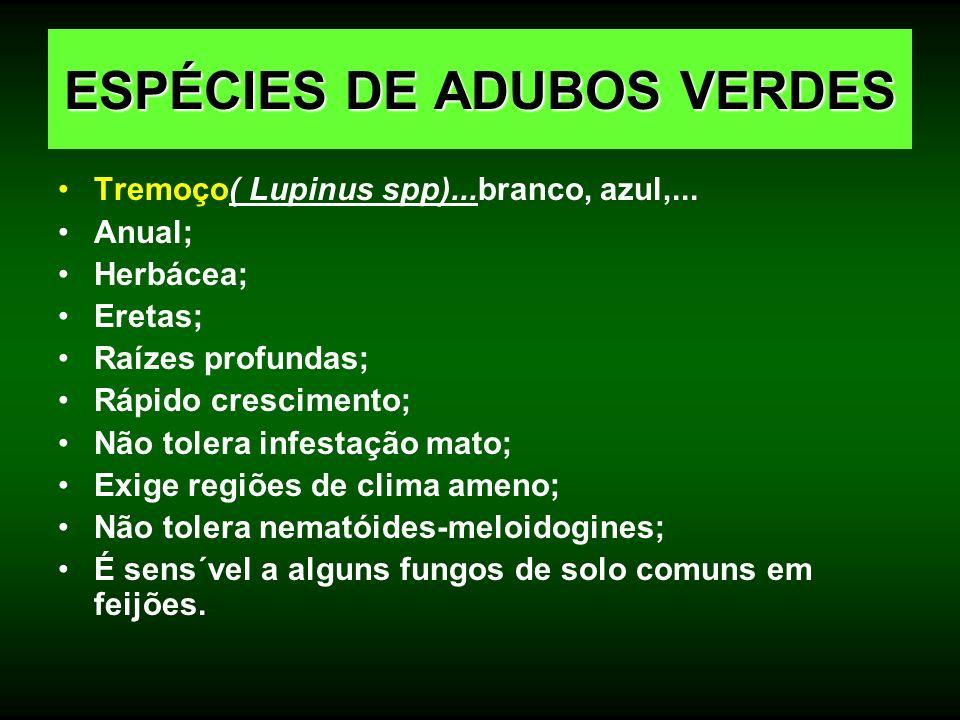 Tremoço( Lupinus spp)...branco, azul,... Anual; Herbácea; Eretas; Raízes profundas; Rápido crescimento; Não tolera infestação mato; Exige regiões de c