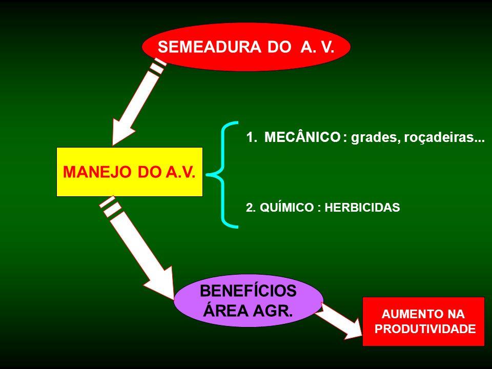 SEMEADURA DO A. V. MANEJO DO A.V. BENEFÍCIOS ÁREA AGR. 1.MECÂNICO : grades, roçadeiras... 2. QUÍMICO : HERBICIDAS AUMENTO NA PRODUTIVIDADE
