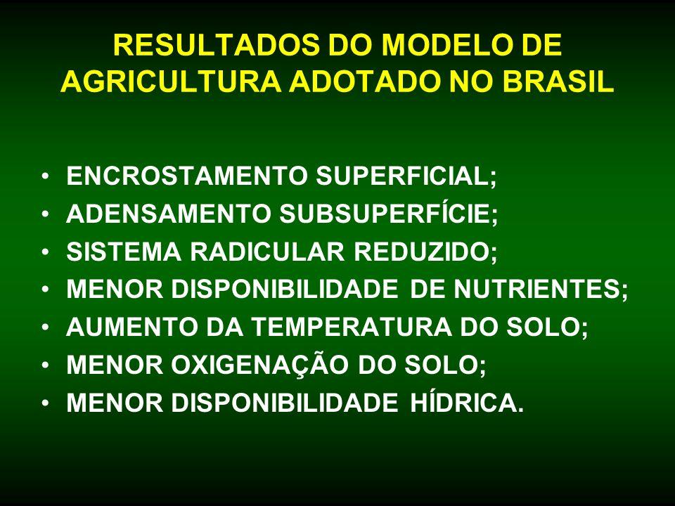 RESULTADOS DO MODELO DE AGRICULTURA ADOTADO NO BRASIL ENCROSTAMENTO SUPERFICIAL; ADENSAMENTO SUBSUPERFÍCIE; SISTEMA RADICULAR REDUZIDO; MENOR DISPONIB
