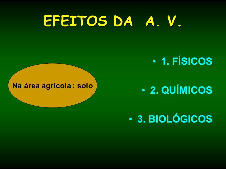 EFEITOS DA A. V. 1. FÍSICOS 2. QUÍMICOS 3. BIOLÓGICOS Na área agrícola : solo