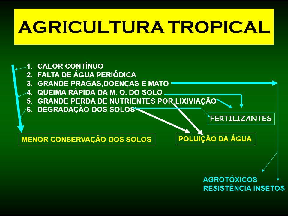 AGRICULTURA TROPICAL 1.CALOR CONTÍNUO 2.FALTA DE ÁGUA PERIÓDICA 3.GRANDE PRAGAS,DOENÇAS E MATO 4.QUEIMA RÁPIDA DA M. O. DO SOLO 5.GRANDE PERDA DE NUTR