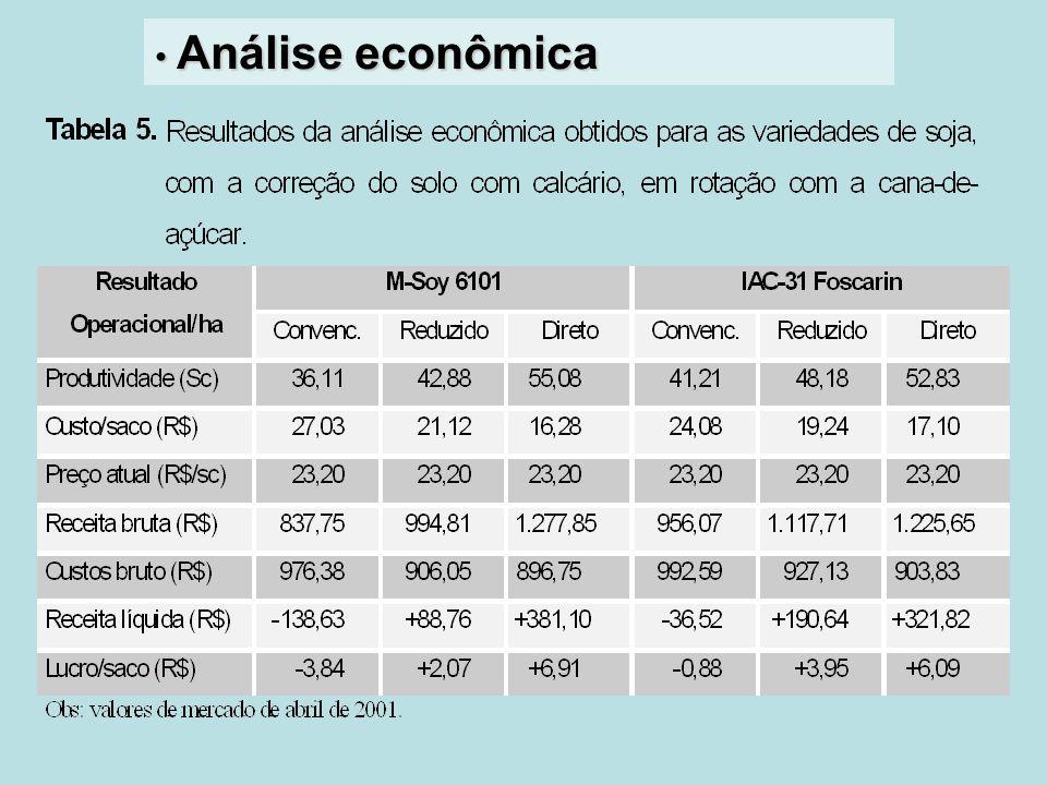 Análise econômica Análise econômica