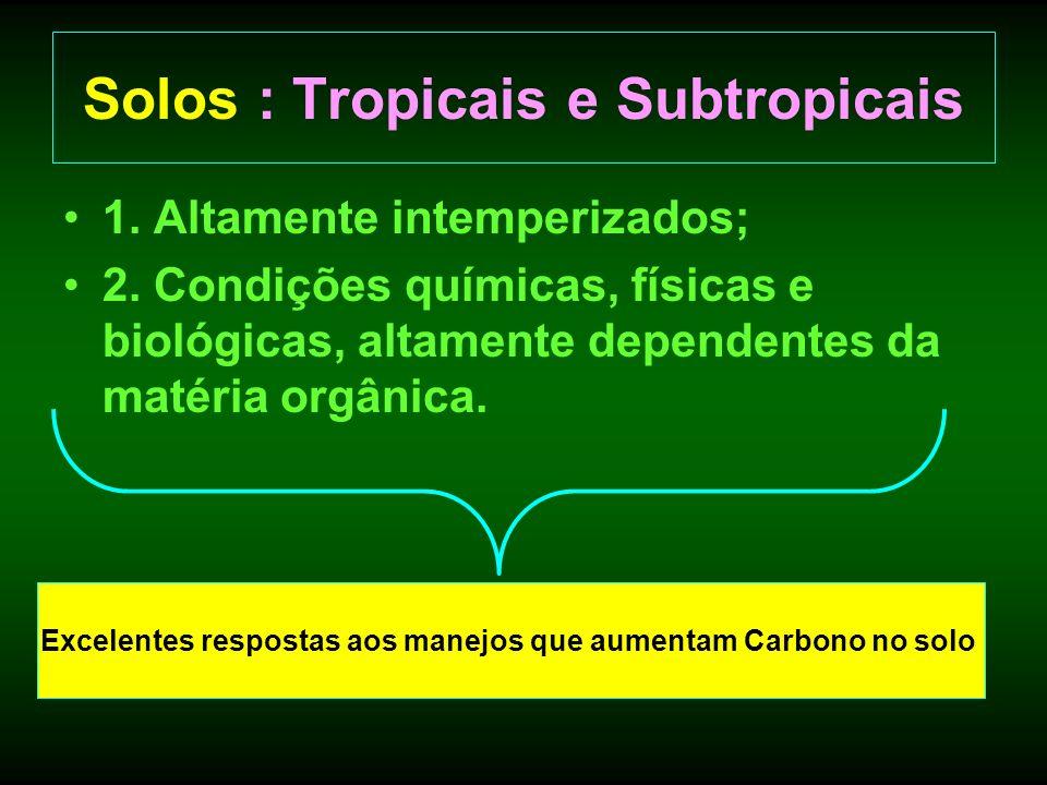 Solos : Tropicais e Subtropicais 1. Altamente intemperizados; 2. Condições químicas, físicas e biológicas, altamente dependentes da matéria orgânica.
