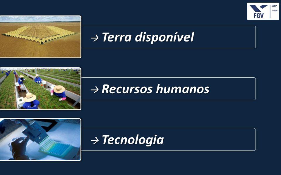 - 19 - Terra disponível Terra disponível Tecnologia Tecnologia Recursos humanos Recursos humanos