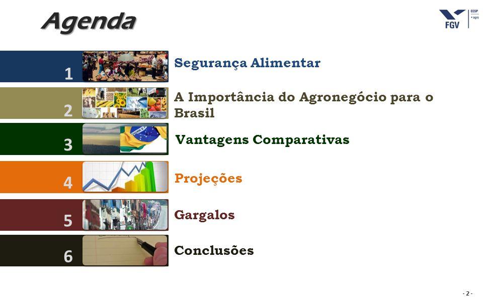 - 13 - Produção brasileira de carnes em milhões de toneladas Fontes: CNPC, ABIEC, UBABEF, ABIPECS, USDA..