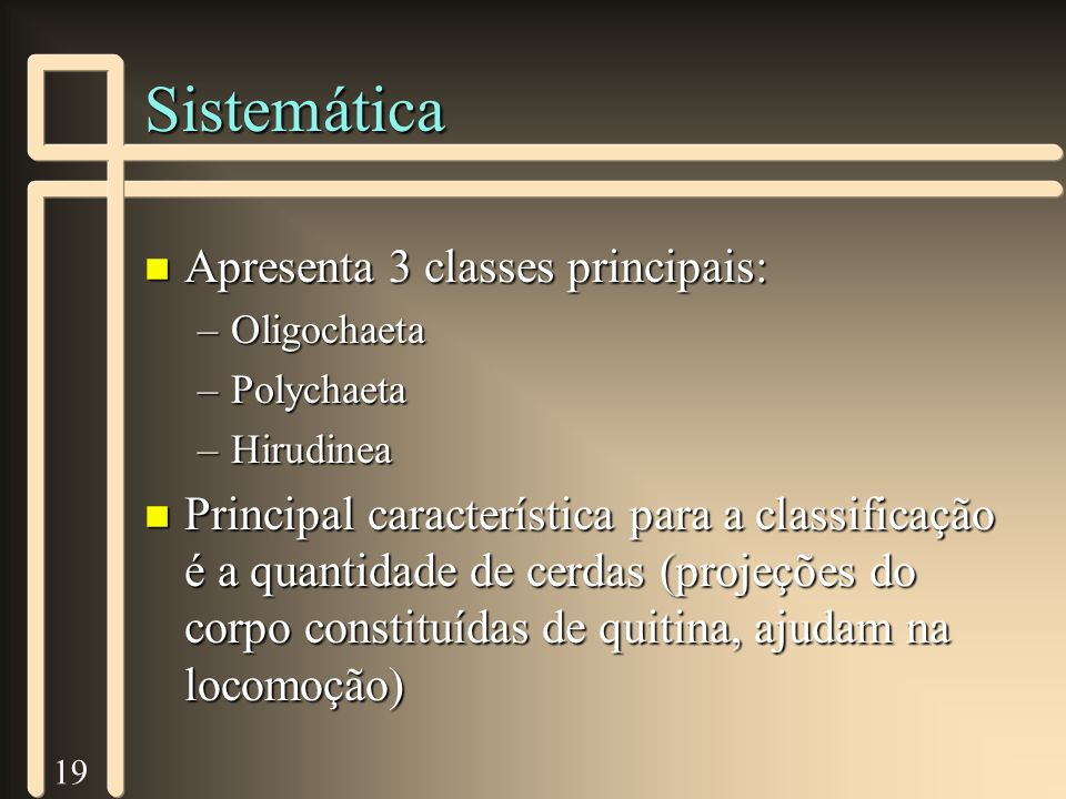 19 Sistemática n Apresenta 3 classes principais: –Oligochaeta –Polychaeta –Hirudinea n Principal característica para a classificação é a quantidade de