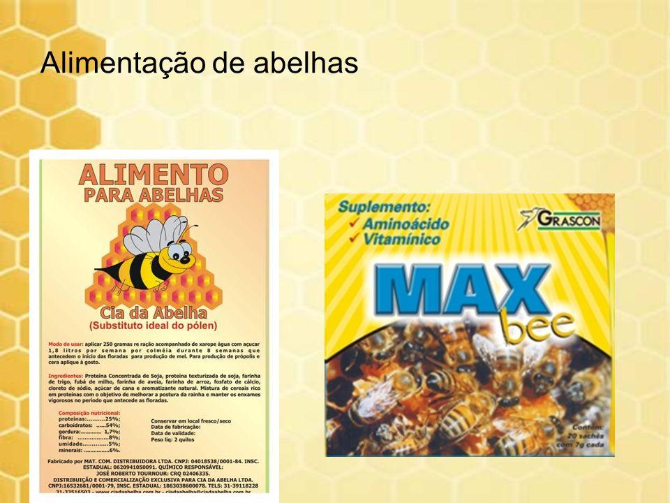 Alimentação de abelhas