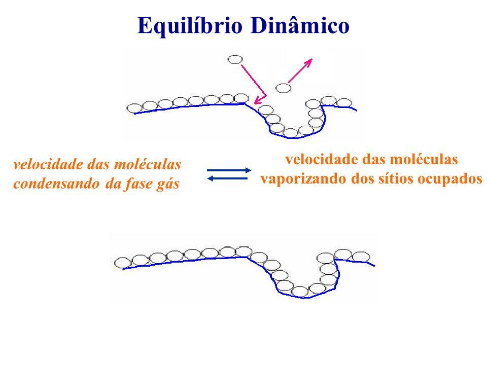 Equilíbrio Dinâmico velocidade das moléculas condensando da fase gás velocidade das moléculas vaporizando dos sítios ocupados
