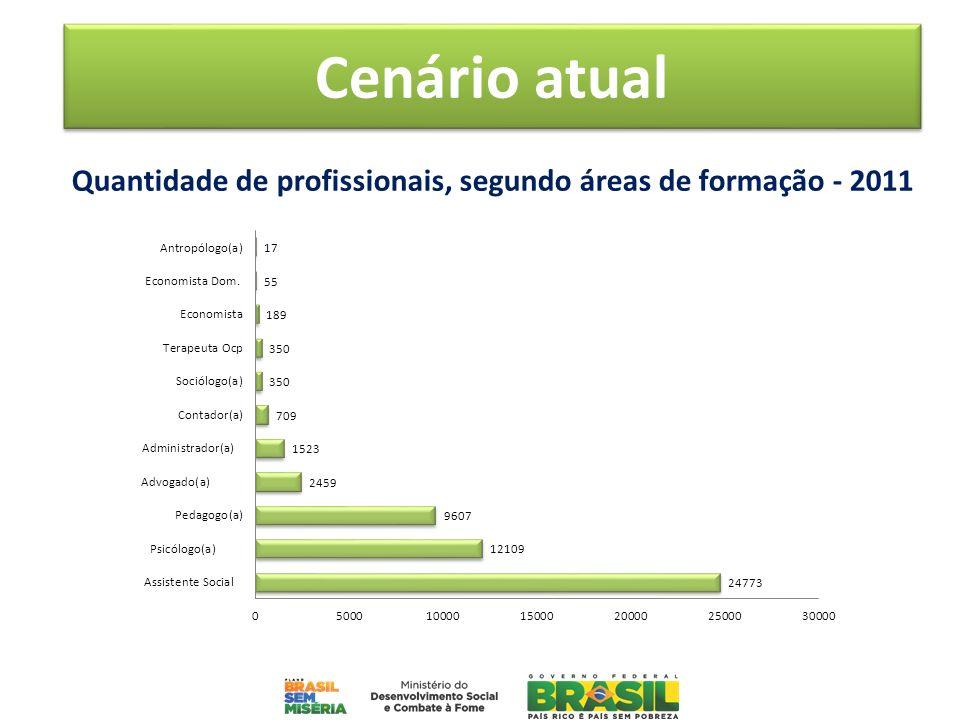 Quantidade de profissionais, segundo áreas de formação - 2011 Cenário atual