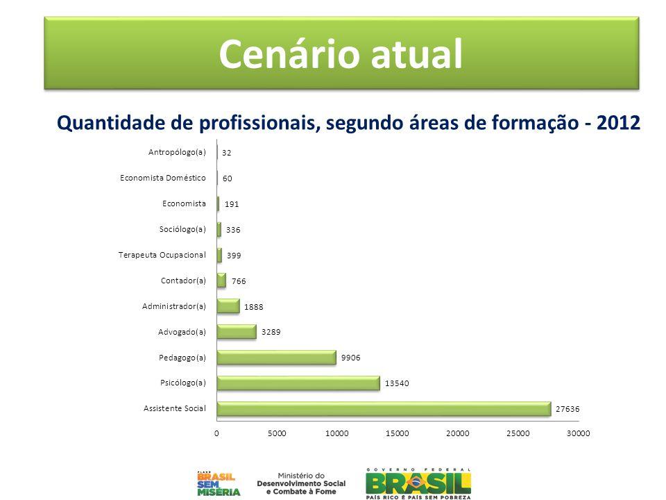 Quantidade de profissionais, segundo áreas de formação - 2012 Cenário atual